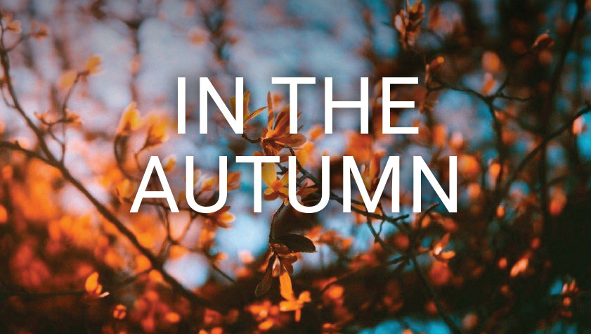 1 In The Autumn.jpg