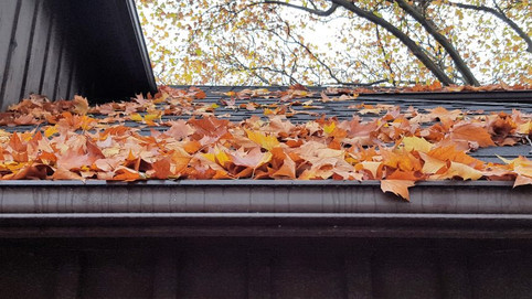 Gutter cleaning in Toronto