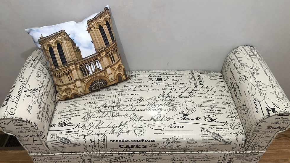Notre Dame Cathedral pillow