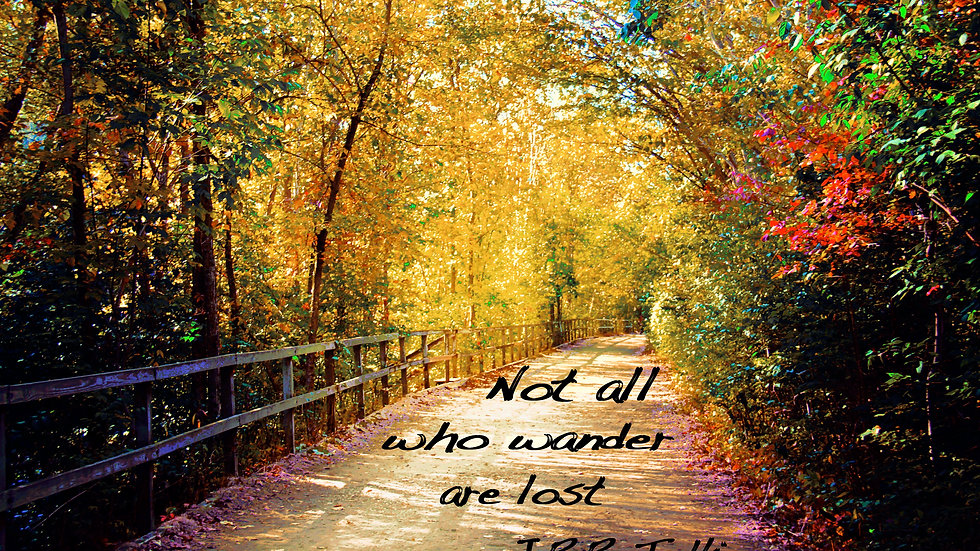 'Not All Who Wander Are Lost' - MorningGlory