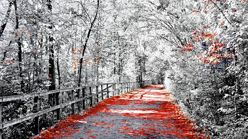 Michigan Stroll At Yates - Gray & Red