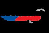 Selbet's Automotive Logo