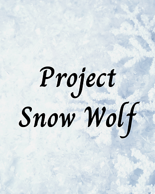 Project Snow Wolf (21).png
