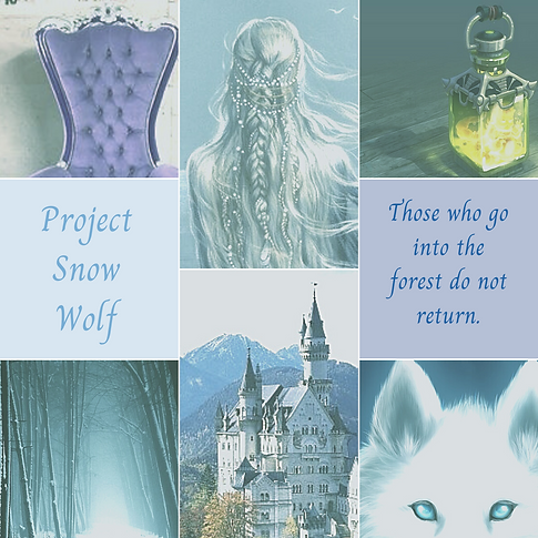 Project Snow Wolf.png