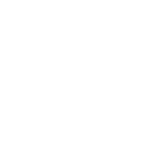 2018 Wix Expert Badge #4 white NB.png