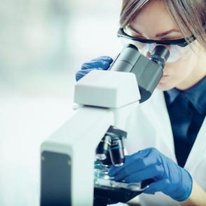 Flour microbiology survey