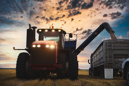 60 Wheat supply.jpg