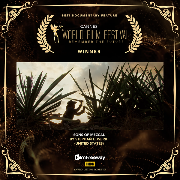 06.BEST DOCUMENTARY FEATURE.png