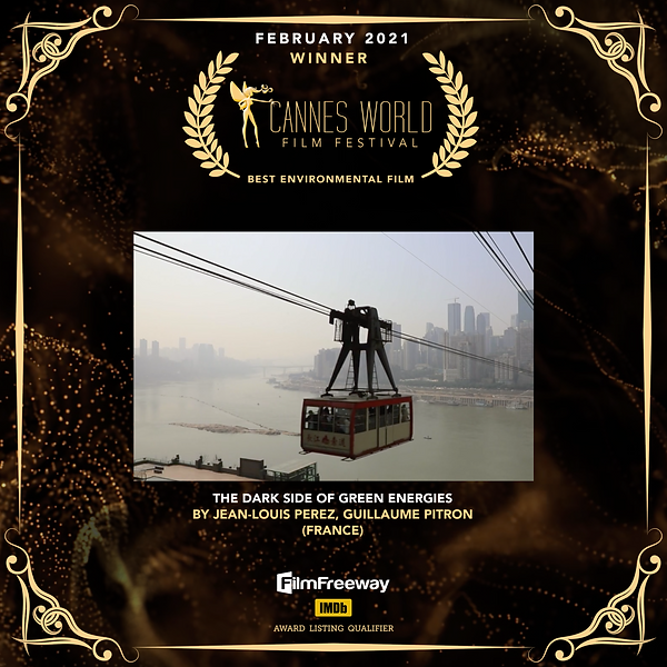 Best Environmental Film.png