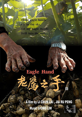 EAGLE HAND.jpg