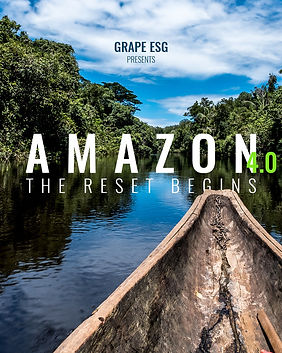 AMAZON 4.0.jpg