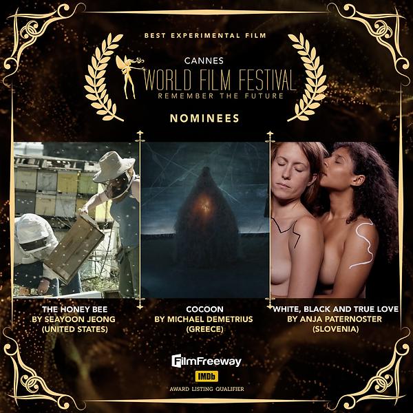 21.BEST EXPERIMENTAL FILM.png