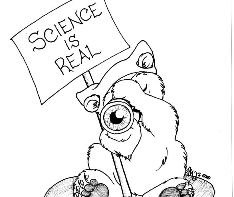 Polar Bear Protester