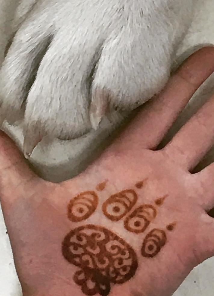 Henna Paw.JPG
