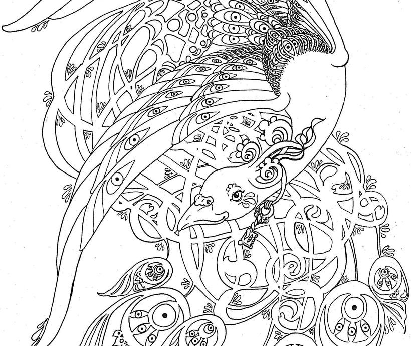 Firebird Fledgling