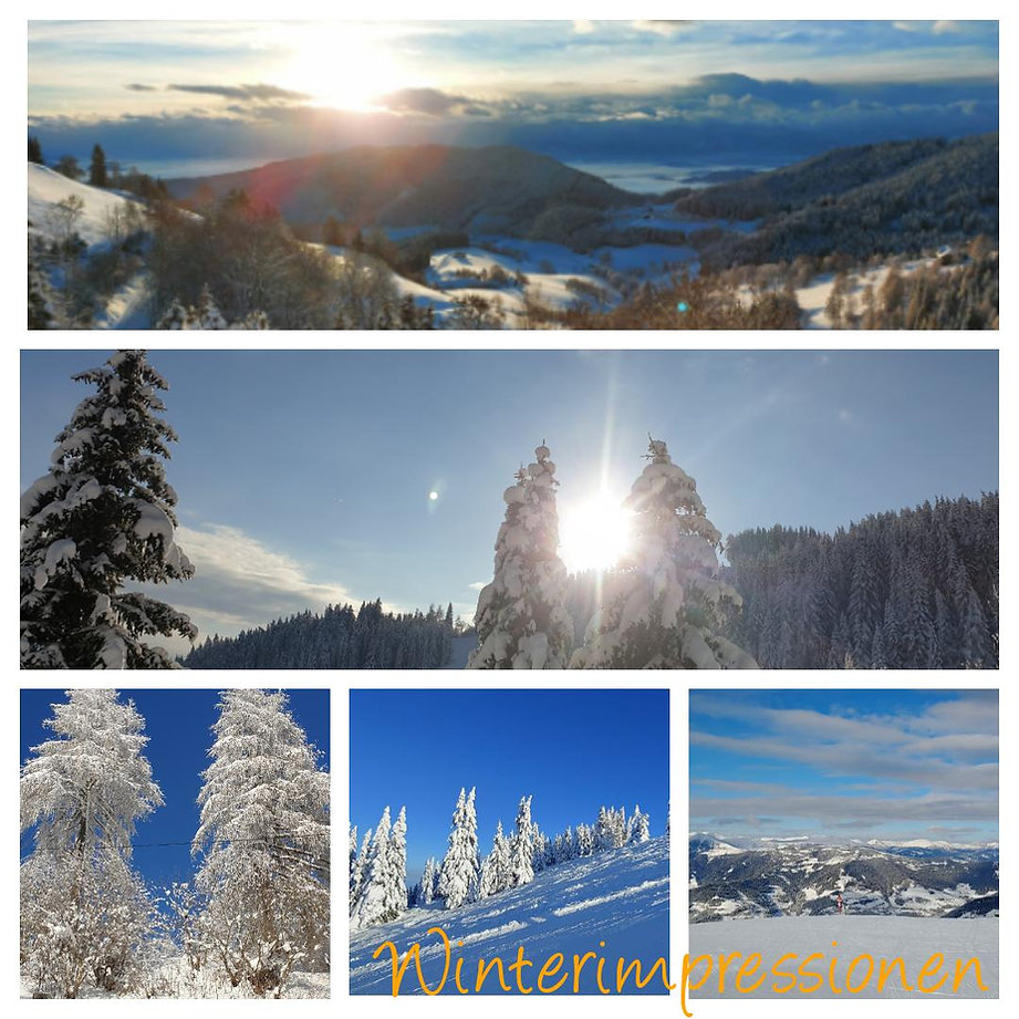 PHOTO-2021-01-10-14-19-56.jpg