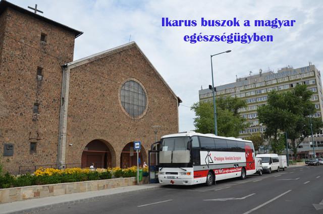 ikarus_eu_buszok.jpg