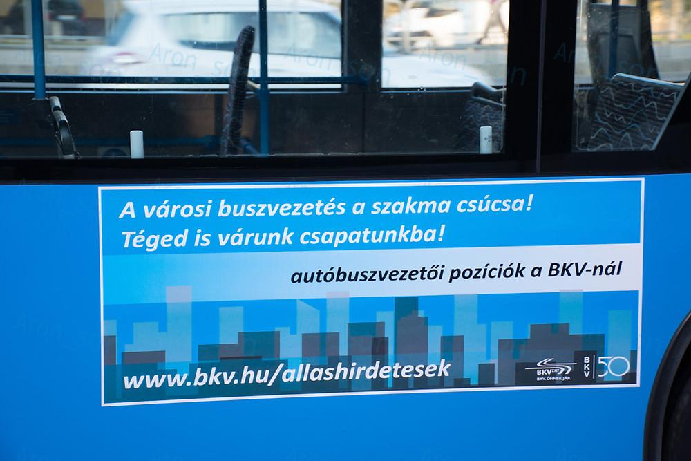 buszvezeto_201806_2.jpg