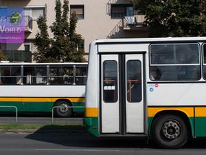 Dunaújváros helyi buszai