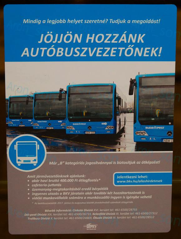 buszvezeto_201712.jpg