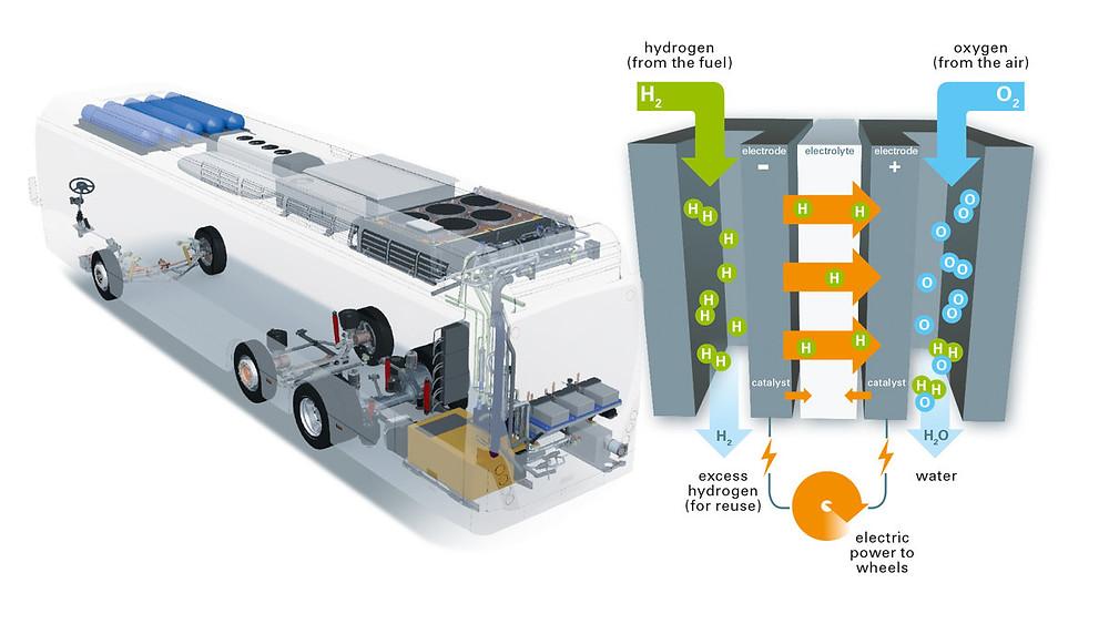 vh_fuel_cell.jpg