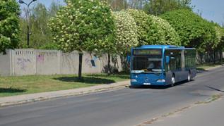 31 darab használt Citaro   BKV Zrt.
