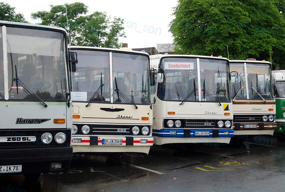 A német szekció szóló buszai szinte teljesen együtt álltak, kivéve a Farost.