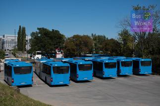 Autóbusz-értékesítés és vevőszolgálat