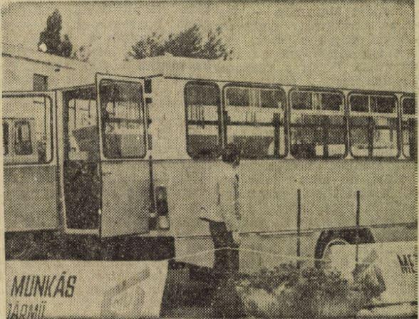 bnv-n.JPG