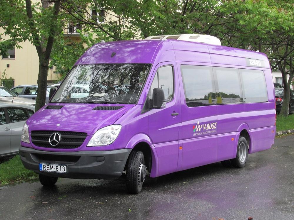 Az egyetlen minibusz: Horvátországból vásárolt Sprinter.