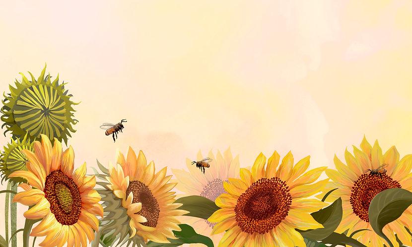 hand-drawn-sunflower-yellow-background.jpg