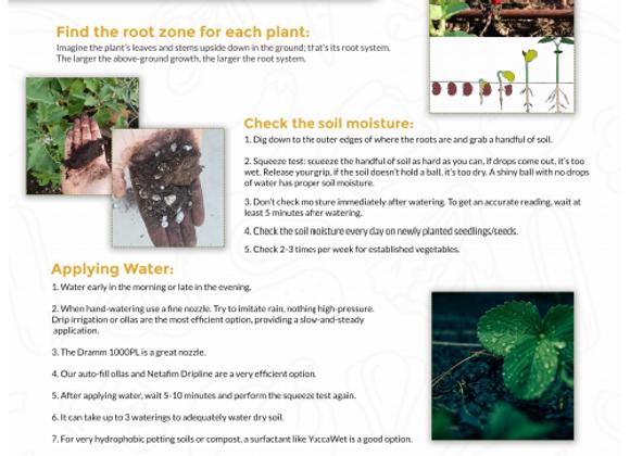 Vegetable Watering Guide PDF