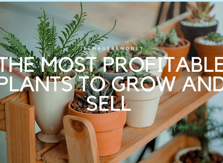 How To Make Money Growing Plants