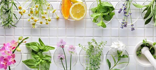 Herbs Blog image 1600 x 720.jpg