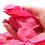 Thumbnail: Melting Rose Petals
