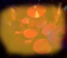 HerenV-homepage2.png