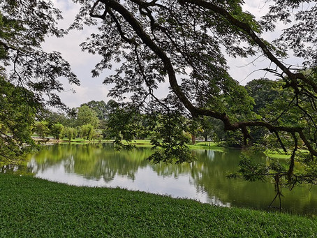 Fabulous Firsts of Taiping