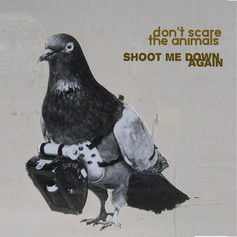 DON'T SCARE THE ANIMALS - SHOOT ME DOWN