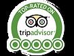 The Wisteria TripAdvisor