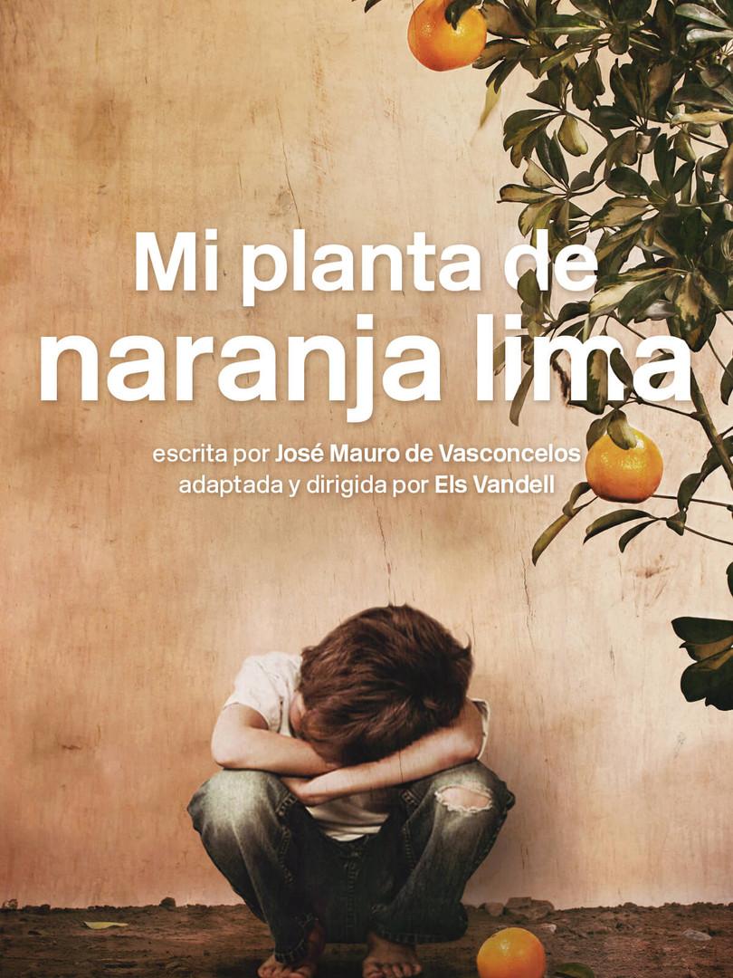 mi planta de naranja lima.jpg