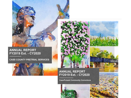 Looking Back- A Review of 2020: Annual Reports