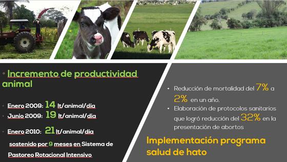 Incremento en Producción y Mejora de Indicadores de Salud Animal