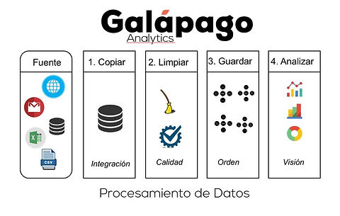 Proceso_Alejandro_Rodriguez_Consultor_Ga