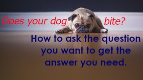 The question you ask determines the answer you get.