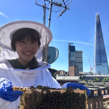 Visitor to Bermondsey Street Bees.jpg