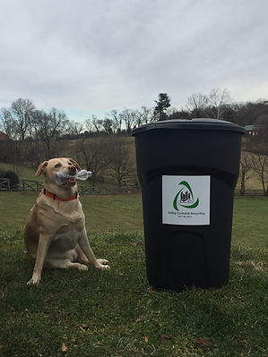 Dog recycling bottle for valley curbside recycling