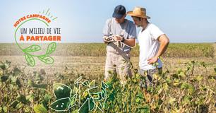 Des efforts pour diminuer l'usage des pesticides