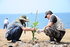 種樹撫育.jpg