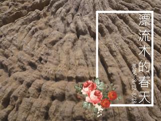 【漂流木的春天】-展覽