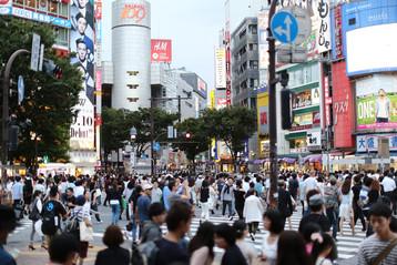 日本眾議院大選研析
